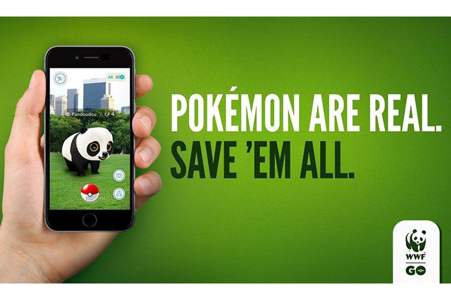 pokemon_affiche_buzz_wwf